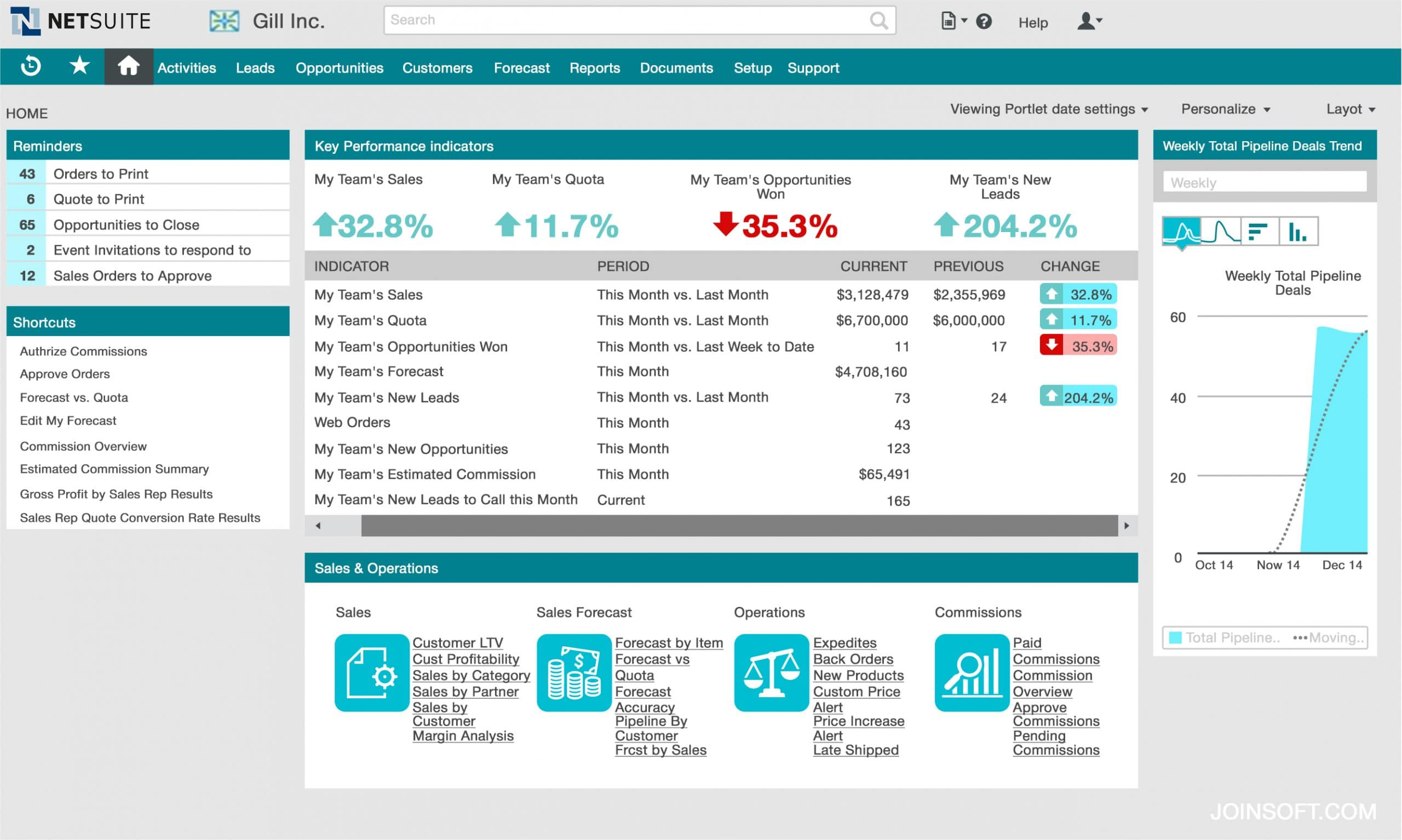 In-depth analysis with NetSuite CRM