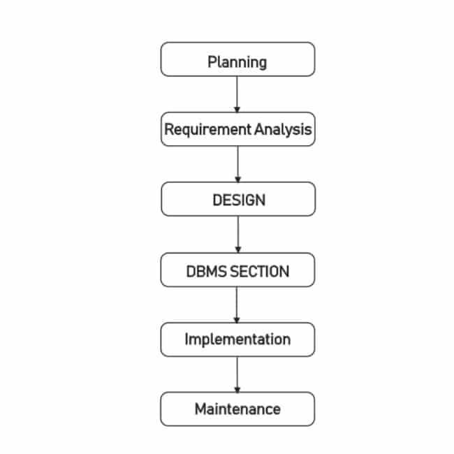 What the Steps in the Development of a Database System